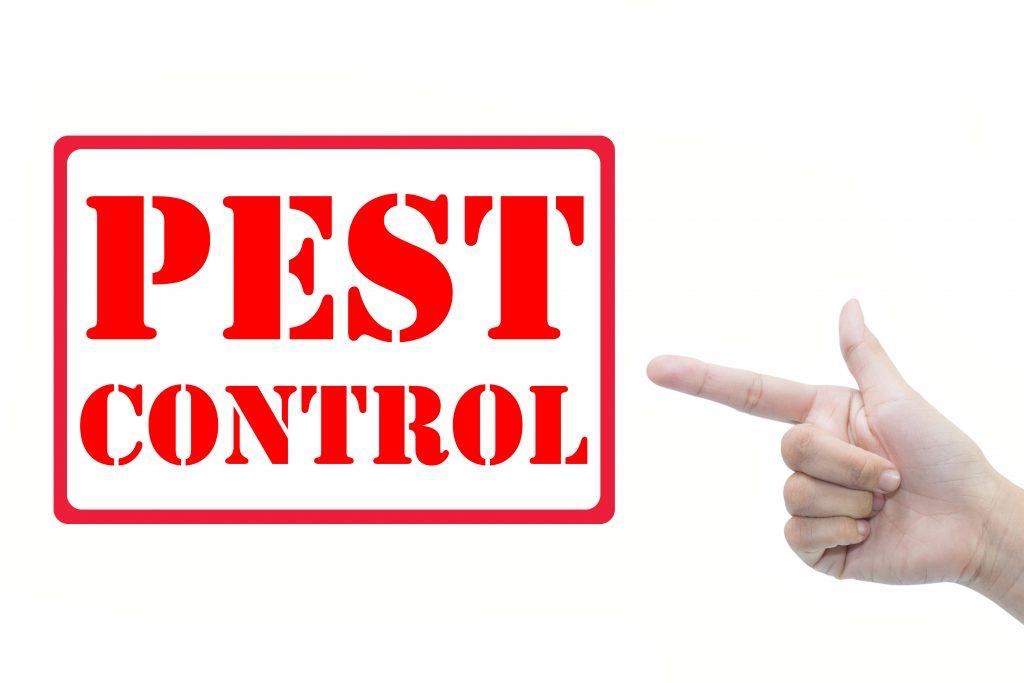 Pest Control Deals Perth