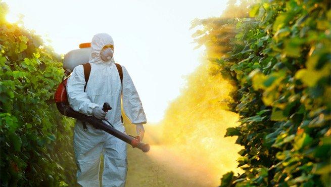pest-control-perth